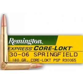 20 st Remington 30-06 PSP 180 gr