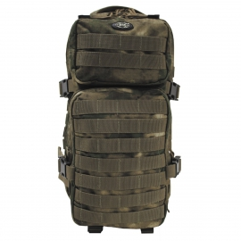 Rugtas Backpack Assault I, HDT-camo FG